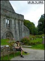 Lis à l'abbaye !